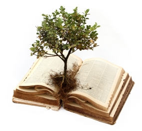 grow-bible_-tree_